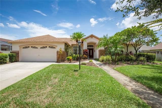 12310 Glencliff Circle, Tampa, FL 33626 (MLS #U8090982) :: Lockhart & Walseth Team, Realtors
