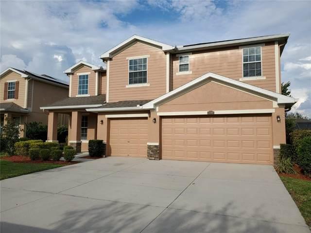12308 Fairlawn Drive, Riverview, FL 33579 (MLS #U8091006) :: Team Bohannon Keller Williams, Tampa Properties
