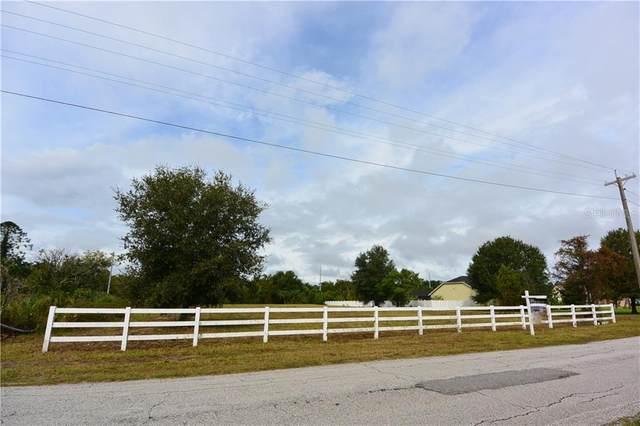 17162 Brown Road, Odessa, FL 33556 (MLS #U8091990) :: Sarasota Gulf Coast Realtors