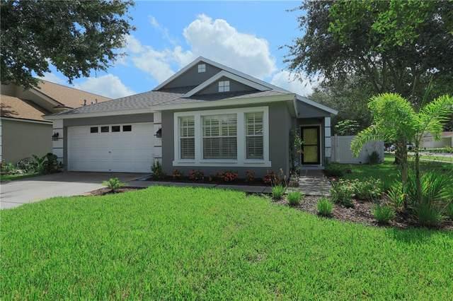 1761 Harbor Oaks Drive, Tarpon Springs, FL 34689 (MLS #U8092048) :: Team Bohannon Keller Williams, Tampa Properties