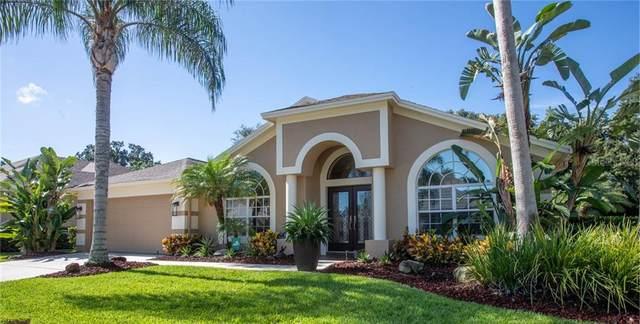 9040 Callaway Drive, Trinity, FL 34655 (MLS #U8092054) :: Heckler Realty