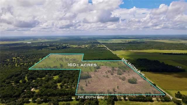 14430 NE 20TH Street, Williston, FL 32696 (MLS #U8092375) :: Bustamante Real Estate