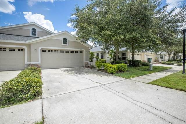 3313 Chapel Creek Circle, Wesley Chapel, FL 33544 (MLS #U8092449) :: Team Bohannon Keller Williams, Tampa Properties