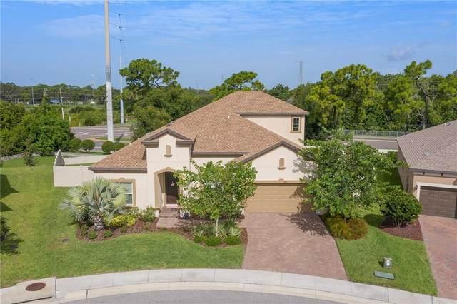 1404 Keystone Ridge Circle, Tarpon Springs, FL 34688 (MLS #U8092510) :: Team Bohannon Keller Williams, Tampa Properties