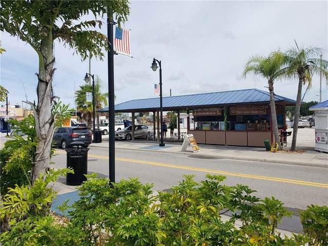 562 Dodecanese Boulevard, Tarpon Springs, FL 34689 (MLS #U8092532) :: Alpha Equity Team