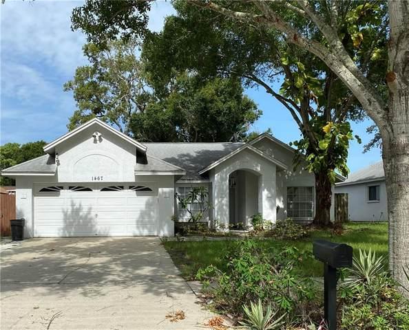1467 Bay View Street, Tarpon Springs, FL 34689 (MLS #U8092663) :: Team Bohannon Keller Williams, Tampa Properties