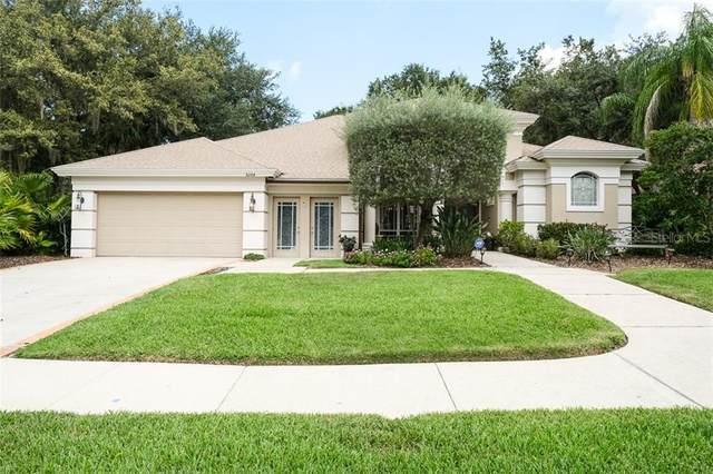 5264 Karlsburg Place, Palm Harbor, FL 34685 (MLS #U8092765) :: Griffin Group