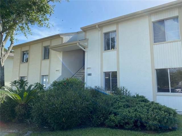 117 Cypress Court, Oldsmar, FL 34677 (MLS #U8092941) :: Pristine Properties