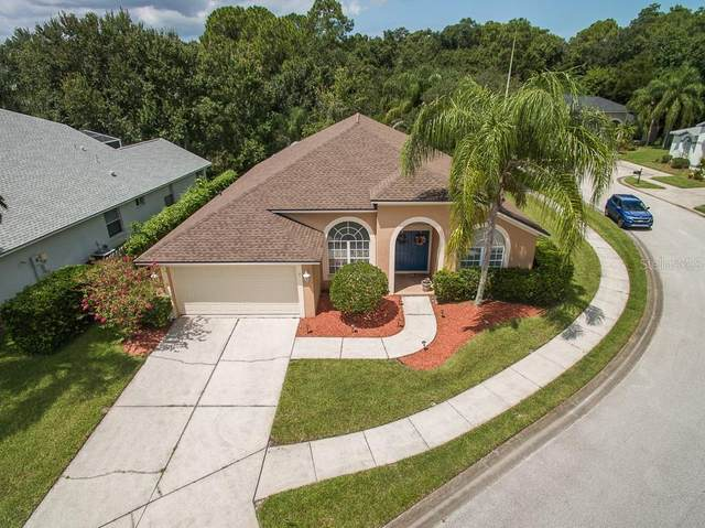 4720 Stonebriar Drive, Oldsmar, FL 34677 (MLS #U8093047) :: Team Borham at Keller Williams Realty