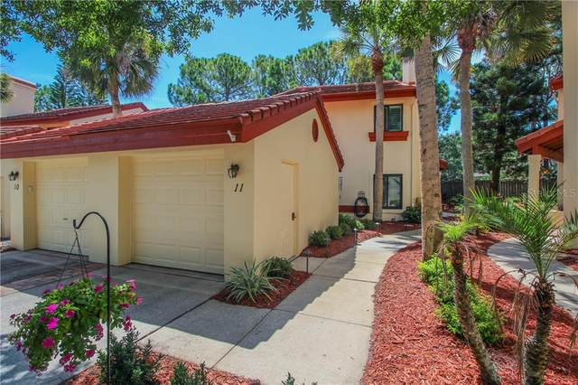 3460 Countryside Boulevard #11, Clearwater, FL 33761 (MLS #U8093051) :: Griffin Group