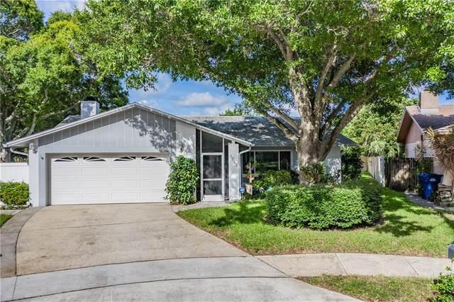 1983 E Orangeside Road, Palm Harbor, FL 34683 (MLS #U8093142) :: Delta Realty Int