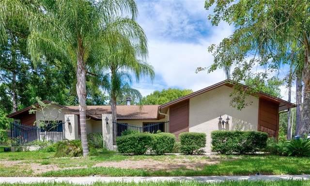 60 Oakwood Court, Palm Harbor, FL 34683 (MLS #U8093169) :: Cartwright Realty