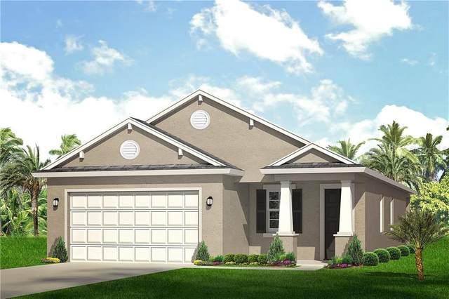 7731 Conrad Street, Wesley Chapel, FL 33544 (MLS #U8093257) :: Griffin Group