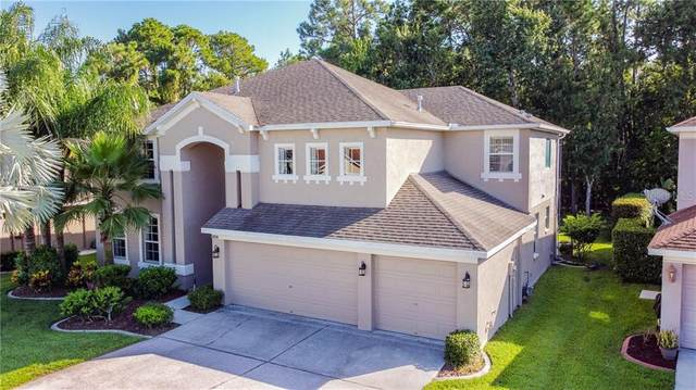 2434 Brinley Drive, Trinity, FL 34655 (MLS #U8093301) :: The Figueroa Team