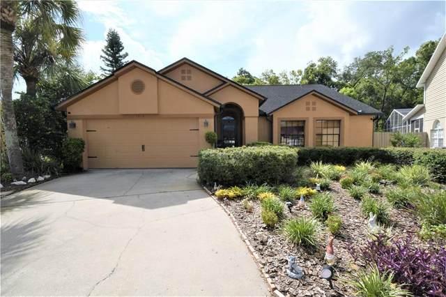 1814 Wood Stock Circle, Tarpon Springs, FL 34689 (MLS #U8093320) :: Delta Realty Int