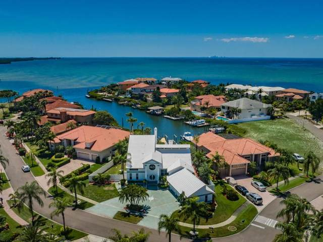 1001 Piano Lane, Apollo Beach, FL 33572 (MLS #U8093353) :: Medway Realty
