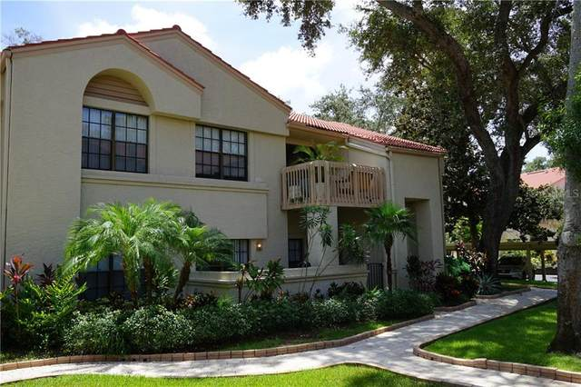 321 Los Prados Drive #113, Safety Harbor, FL 34695 (MLS #U8093369) :: Your Florida House Team