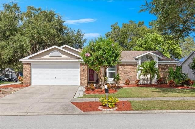 353 Jean Street, Palm Harbor, FL 34683 (MLS #U8093409) :: Delta Realty Int