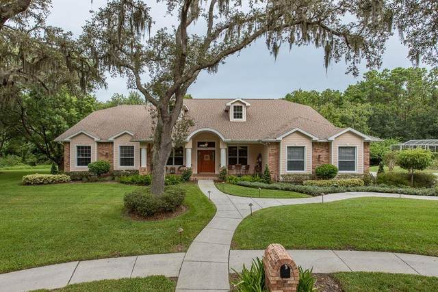 1059 Pomme De Pin Lane, Trinity, FL 34655 (MLS #U8093462) :: The Figueroa Team