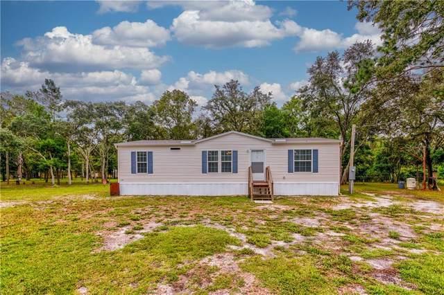 14600 Todd Trail, Spring Hill, FL 34610 (MLS #U8093497) :: Griffin Group