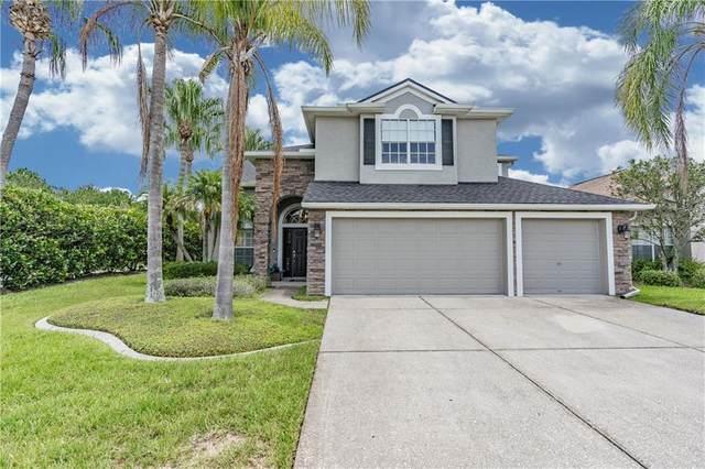 3250 Sago Point Court, Land O Lakes, FL 34639 (MLS #U8093551) :: Team Bohannon Keller Williams, Tampa Properties