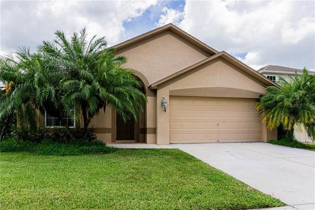 1747 Roseroot Court, Trinity, FL 34655 (MLS #U8093620) :: Mark and Joni Coulter | Better Homes and Gardens