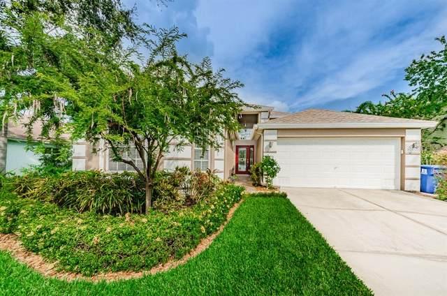 825 Addison Drive NE, St Petersburg, FL 33716 (MLS #U8093636) :: Griffin Group