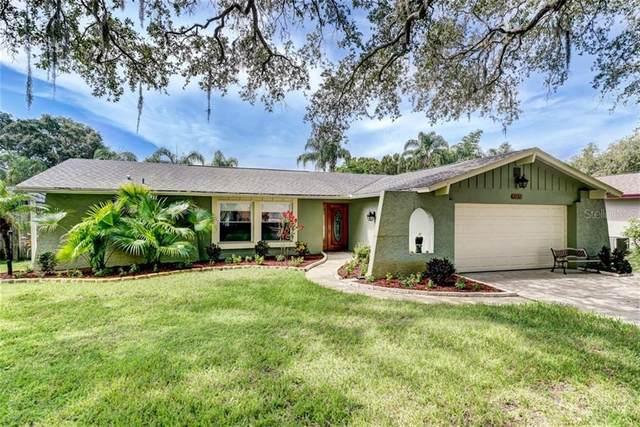 13450 Andova Drive, Largo, FL 33774 (MLS #U8093646) :: Dalton Wade Real Estate Group