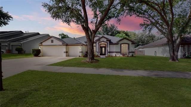 4208 Imperial Eagle Drive, Valrico, FL 33594 (MLS #U8093708) :: Cartwright Realty