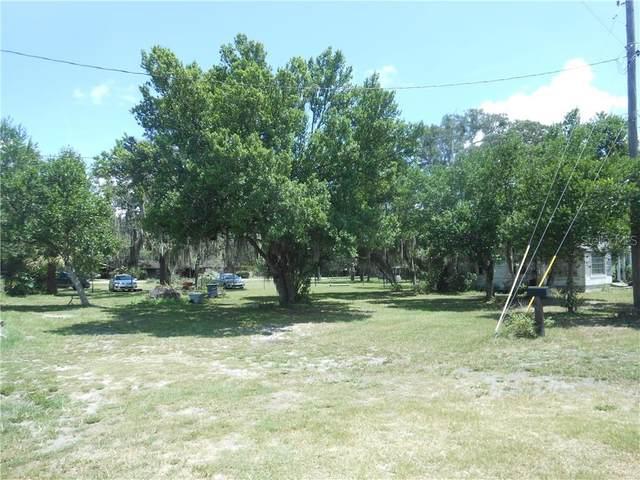 11410 Palm Avenue, Riverview, FL 33569 (MLS #U8093738) :: Premier Home Experts