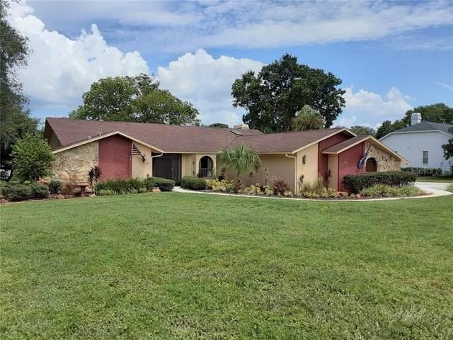 5318 Patricia Place, Weeki Wachee, FL 34607 (MLS #U8093749) :: Premier Home Experts