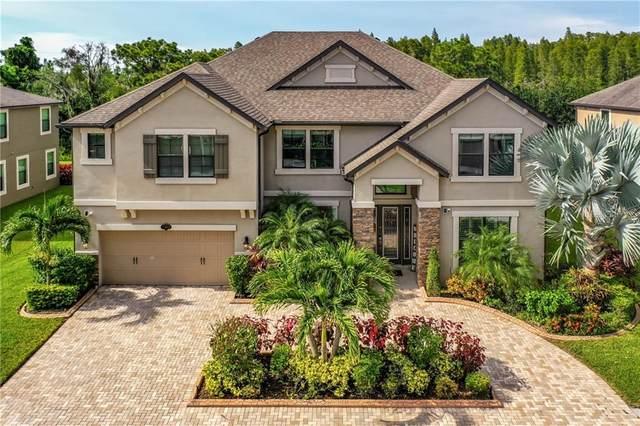 11808 Gilmerton Drive, Riverview, FL 33579 (MLS #U8093760) :: New Home Partners