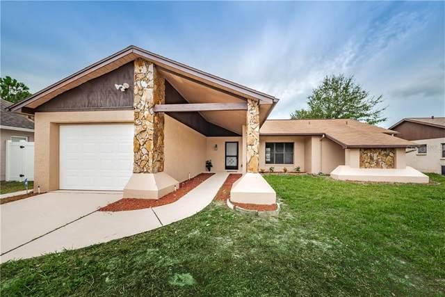 1239 Calamondin Drive, Holiday, FL 34691 (MLS #U8093775) :: New Home Partners