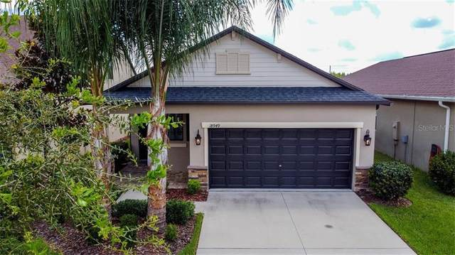 18949 Hampstead Heath Court, Land O Lakes, FL 34638 (MLS #U8093794) :: Baird Realty Group