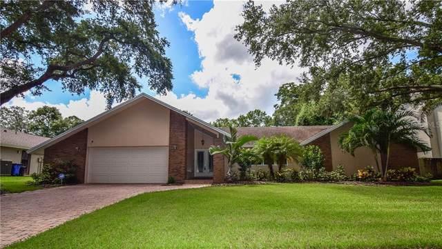 12274 Windtree Boulevard, Seminole, FL 33772 (MLS #U8093821) :: The Heidi Schrock Team