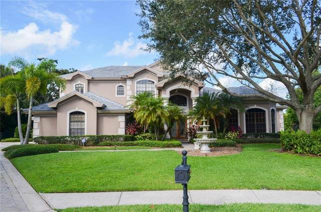 311 Signature Terrace, Safety Harbor, FL 34695 (MLS #U8093866) :: The Duncan Duo Team