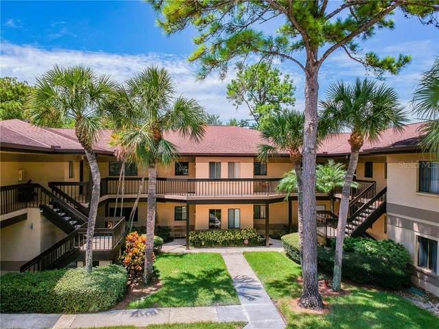 2683 Sabal Springs Circle #205, Clearwater, FL 33761 (MLS #U8093922) :: Baird Realty Group