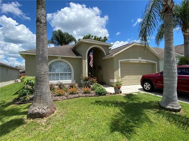 24811 Gun Smoke Drive, Land O Lakes, FL 34639 (MLS #U8093924) :: Premier Home Experts