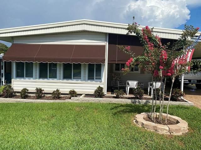 87 Redwood Drive #5, Safety Harbor, FL 34695 (MLS #U8093978) :: Zarghami Group