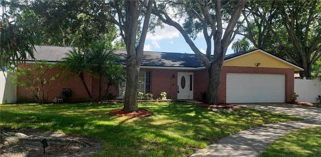 2950 165TH Avenue N, Clearwater, FL 33760 (MLS #U8093986) :: Ramos Professionals Group