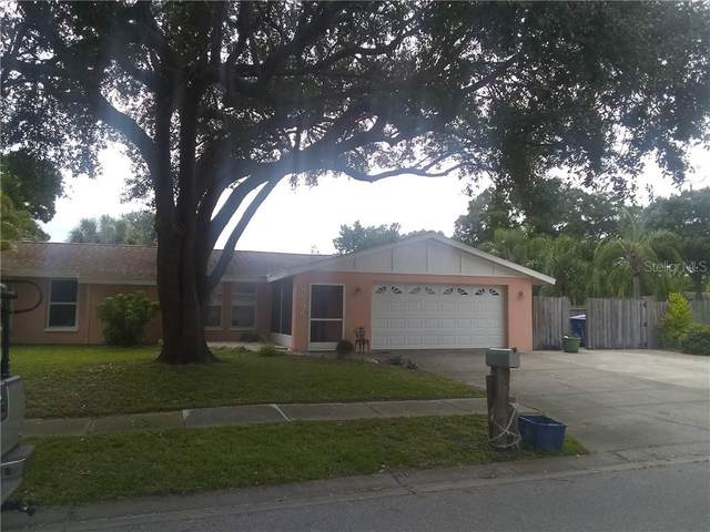 6596 Channelside Terrace N, Pinellas Park, FL 33781 (MLS #U8094019) :: Homepride Realty Services