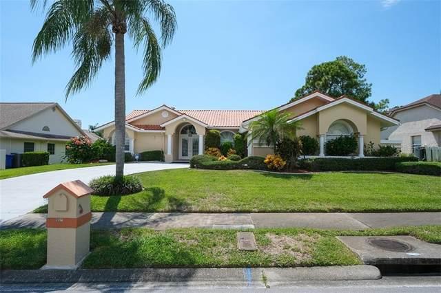 2688 Challenger Drive, Palm Harbor, FL 34683 (MLS #U8094038) :: Cartwright Realty