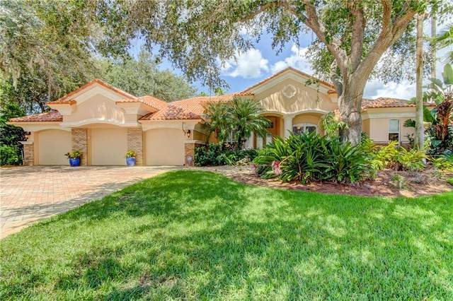 3983 Moreno Drive, Palm Harbor, FL 34685 (MLS #U8094109) :: Ramos Professionals Group