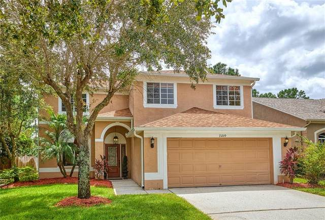 13209 Royal George Avenue, Odessa, FL 33556 (MLS #U8094159) :: Team Bohannon Keller Williams, Tampa Properties