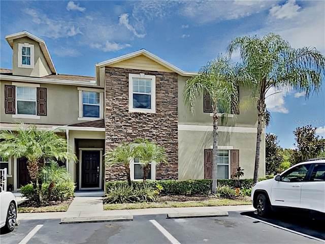 31251 Claridge Place, Wesley Chapel, FL 33543 (MLS #U8094357) :: Heckler Realty