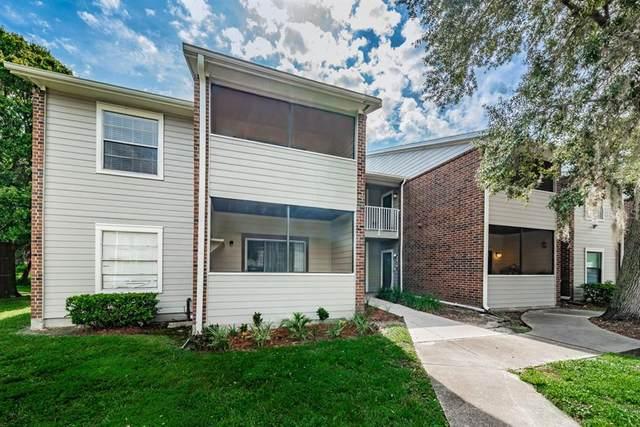 1400 Gandy Boulevard N #1008, St Petersburg, FL 33702 (MLS #U8094377) :: Frankenstein Home Team