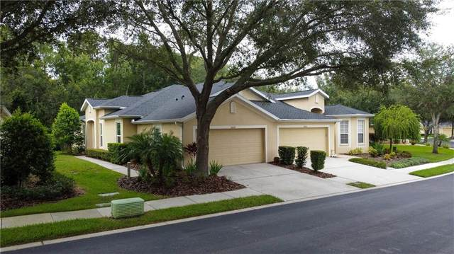 10624 Ashford Oaks Drive, Tampa, FL 33625 (MLS #U8094380) :: The Figueroa Team