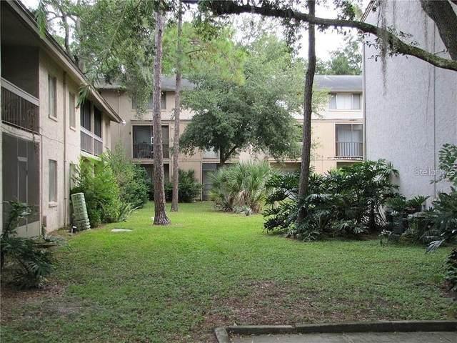 5501 Pokeweed Court #140, Tampa, FL 33617 (MLS #U8094398) :: Frankenstein Home Team