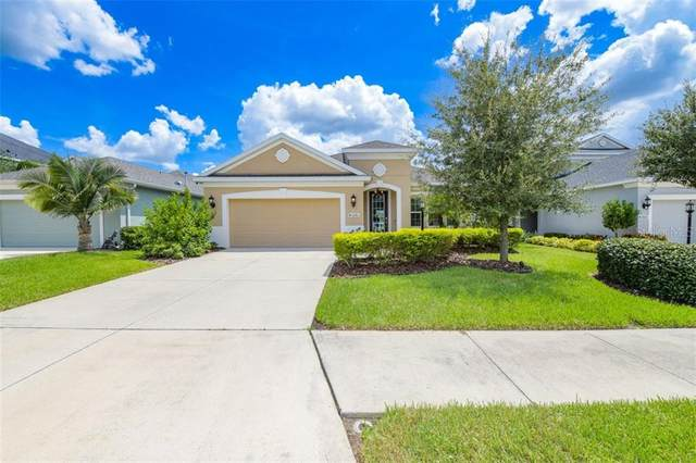11103 Blue Magnolia Lane, Parrish, FL 34219 (MLS #U8094407) :: Icon Premium Realty