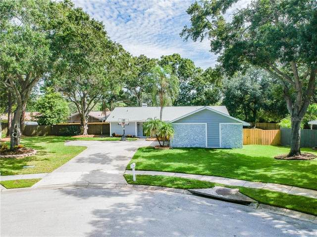 3387 Atwood Court, Clearwater, FL 33761 (MLS #U8094515) :: Burwell Real Estate